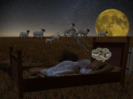 slapeloosheid-slaapstoornis-provigil